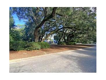 Photo one of 7324 Indigo Palms Way Johns Island SC 29455 | MLS 20033902