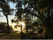 View 1356 Polly Point Rd # Lot 7 Wadmalaw Island SC