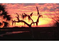View 2133 Rookery Ln Charleston SC