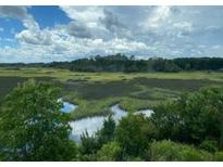 View 187 Winding River Dr Johns Island SC
