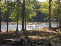 View 779 Peninsula Dr Davidson NC