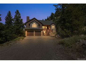 Photo one of 2155 Muscovite Dr Georgetown CO 80444 | MLS 9792255