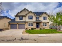 View 16903 W 66Th Ln Arvada CO