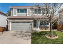 View 1317 Briarhollow Ln Highlands Ranch CO
