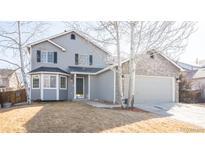 Kenosha Farm Erie Colorado Homes For Sale
