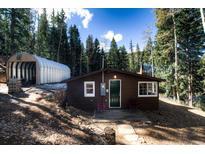 View 647 Old Little Bear Creek Rd Idaho Springs CO