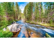 View 451 River Park Dr # 13A Breckenridge CO