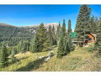 View 321 Monte Cristo Mine Rd Breckenridge CO