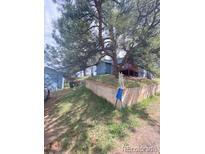 View 2582 S Mt Evans Ln Idledale CO