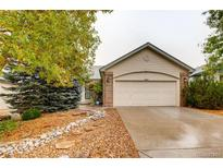 View 9484 Troon Village Dr Lone Tree CO