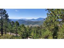 View 24825 Shiloh Lane Ln Conifer CO