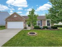 View 13253 Middlewood Ln Fishers IN