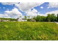 View 11625 Walton Cres Zionsville IN