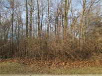 View 6090 Cedar Bend Way Avon IN