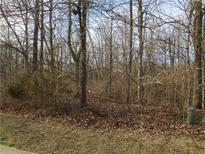 View 6080 Cedar Bend Way Avon IN
