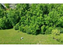 View 6442 Canak Dr Avon IN