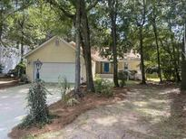 View 137 Voyagers Dr Pawleys Island SC