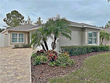 Photo one of 2134 Winsley St Clermont FL 34711   MLS G5037506