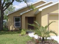 View 2532 Burns St Lakeland FL