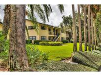 View 110 N Tremain St # 102 Mount Dora FL