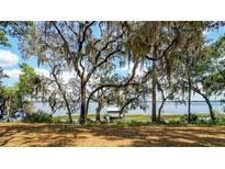 View 19500 Dorr Rd Altoona FL