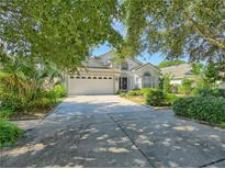 View 33335 Irongate Dr Leesburg FL