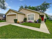 View 10539 Sun Villa Blvd Orlando FL