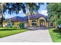 View 2882 E Crooked Lake Dr Eustis FL