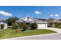 View 3191 Warbler Loop The Villages FL