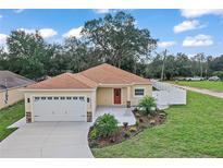 View 40040 Palm St Lady Lake FL