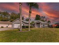 View 10217 Spring Moss Ave Clermont FL