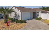 View 1585 Double Palm Pl The Villages FL