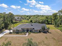 View 29319 Old Ml E Tavares FL