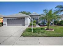 View 3613 Belle Rose Dr Leesburg FL