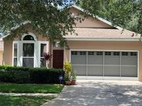 View 33414 Irongate Dr Leesburg FL
