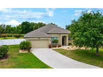 View 12313 Fountain Coin Way Clermont FL