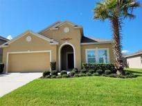 View 3271 Spicer Ave Grand Island FL