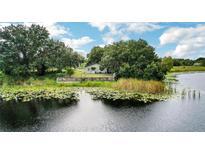 View 33507 Linda Dr Leesburg FL