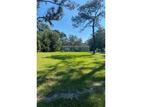 View 38322 County Road 439 Eustis FL