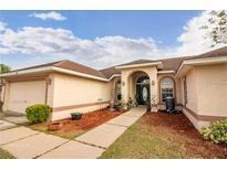 View 8759 Fort Socrum Village Way Lakeland FL