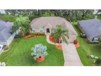 View 3155 Blackwater Oaks Way Mulberry FL