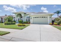 View 2820 Shaughnessy Way Lakeland FL