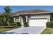 View 5941 Velvet Loop Lakeland FL