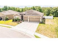View 4361 Stoney River Dr Mulberry FL