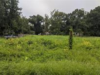 View 1829 Dorothy St Lakeland FL