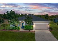 View 5352 Song Sparrow Ct Lakeland FL