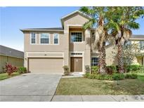 View 12515 Sawgrass Oak St Orlando FL