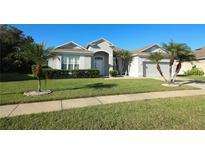 View 3058 Bay Laurel Cir N Kissimmee FL