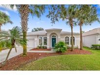 View 2421 Brixham Ave Orlando FL