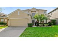 View 13425 Early Frost Cir Orlando FL